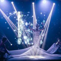организация шоу в Краснодаре