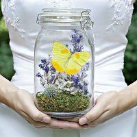 бабочки в декоре свадьбы